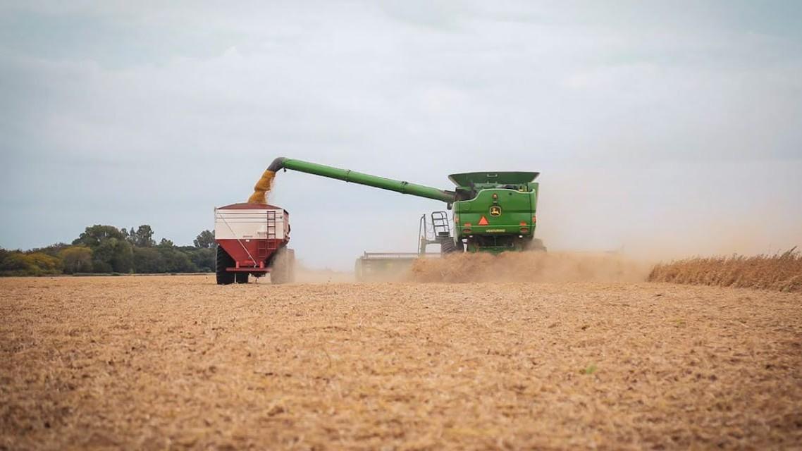 Exportaciones agroindustriales rompen récords